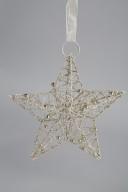 Hängande GuldStjärna D20cm