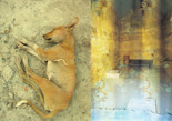 Hund_Krypta