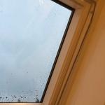 Arm till veluxfönster