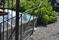 Glashus med rostfri stomme på Millesgården