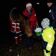 julhäst