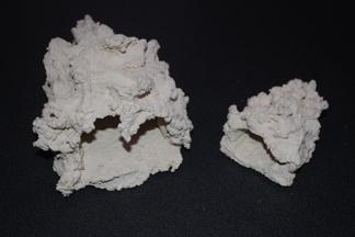 Anemone hole
