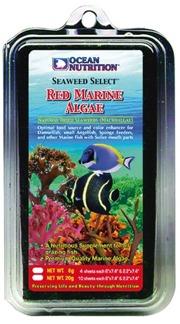 Red Marine Algae