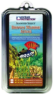 Brown Marine Algae