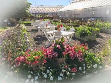 Habblarp Trädgårdar - din handelsträdgård