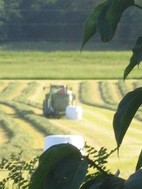 Vi kommer fortsätta producera grovfoder av hög kvalitet på Ulvs-Väsby.