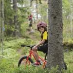 mountainbike_01