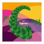 C som i cypress