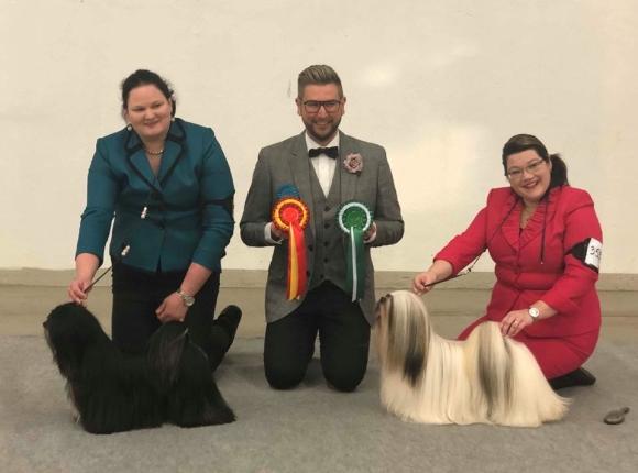 BOB & BOS Lhasa Apso Turku INT 2018