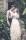 Bröllopsfotograf Dlarna