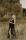 Gravidfotograf Falun