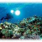 Havsutforskning mjuka kanter