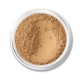 MATTE FOUNDATION SPF 15 - Golden Tan Matte 20