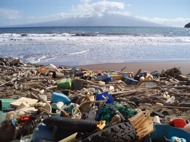 Foto: NOAA Marine Debris Program