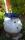 fontän blå