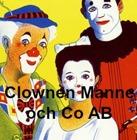 ClownenManne_2014_niva3