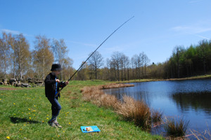 Fiska regnbåge i våra fiskedammar på Våxtorps camping & stugby Laholm