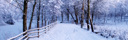 Vinter Våxtorps Camping och stugby