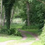 Vägen mot lillesjö