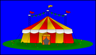 Cirkusskola
