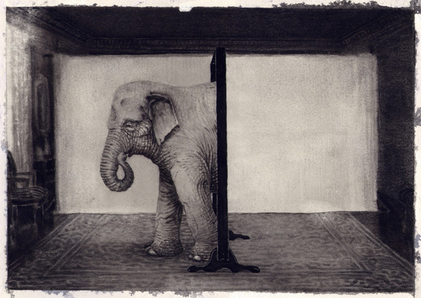 """Elephant"" © Jonas Brandin"