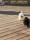 91FDD1B8-6E22-4126-A352-36555BBD4BE9