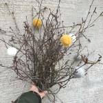 Ullbollar till påskriset eller julgranen