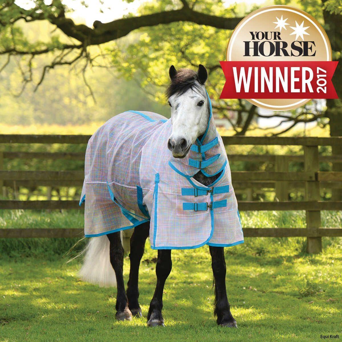 cv_ma5003h_mu02_your_horse_winner