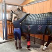 Protechmasta Infrared 200g Stable Rug