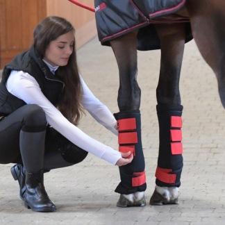 Protechmasta Silveraid Leg Wraps - Ponny. Protechmasta Silveraid Leg Wraps