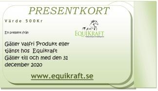 Present Kort - Present kort