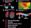 Protechmasta Infrared Täcke med hals