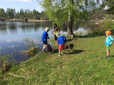Barnbarn på utflykt med valpar