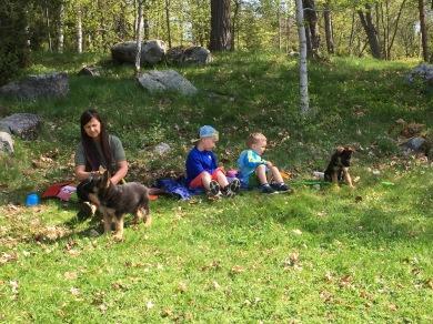 Vilopaus för barnbarn och valpar