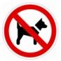 Hundförbud