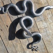 Ormar direkt från smedjan