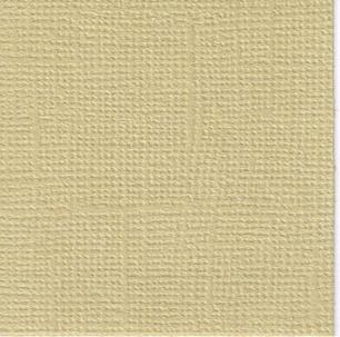 Cardstock Canvas - Khaki 10 pack - Cardstock Canvas - Khaki 10 pack
