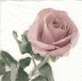 Servett Vintage Rosé