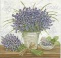 Servett Lavendel