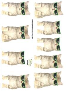Dan design 3D Klippark - Katt m solglasögon - Dan design 3D Klippark - Katt m solglasögon