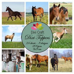 Dixi Toppers - Hästar - Dixi Toppers - Hästar