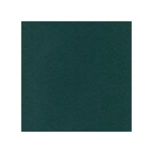 Cardstock - Linen Jade, SC47 - Cardstock - Linen Jade, SC47