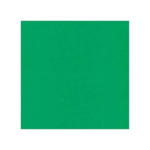 Cardstock - Linen Green, SC22 - Cardstock - Linen Green, SC22