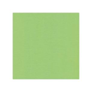 Cardstock - Linen Spring Green, SC21 - Cardstock - Linen Spring Green, SC21