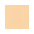 Cardstock - Linen Light Brown, SC08