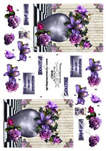 Dan-Quick 3D Klippark - Blommor i vas - Dan-Quick 3D Klippark - Blommor i vas