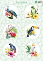 Marianne Design Klippark - Tropical Birds