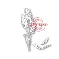 Gummiapan Dies - Stor Lavendel