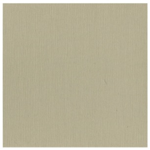 Cardstock - Linen - Taupe, SC53 - Cardstock - Linen - Taupe, SC53