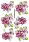 Dan design 3D Klippark - Blommor